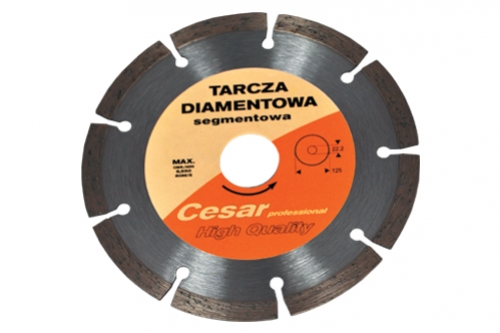 Tarcza Cesar segmentowa Profesional fi 180