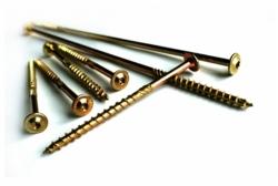 produkt-21-Wkret_utwardzany_konstrukcyjny_TORX__talerzyk_80x100mm___50_szt-19893-546.html