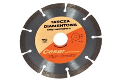 produkt-21-Tarcza_Cesar_segmentowa_Profesional_fi_180-4081-424.html